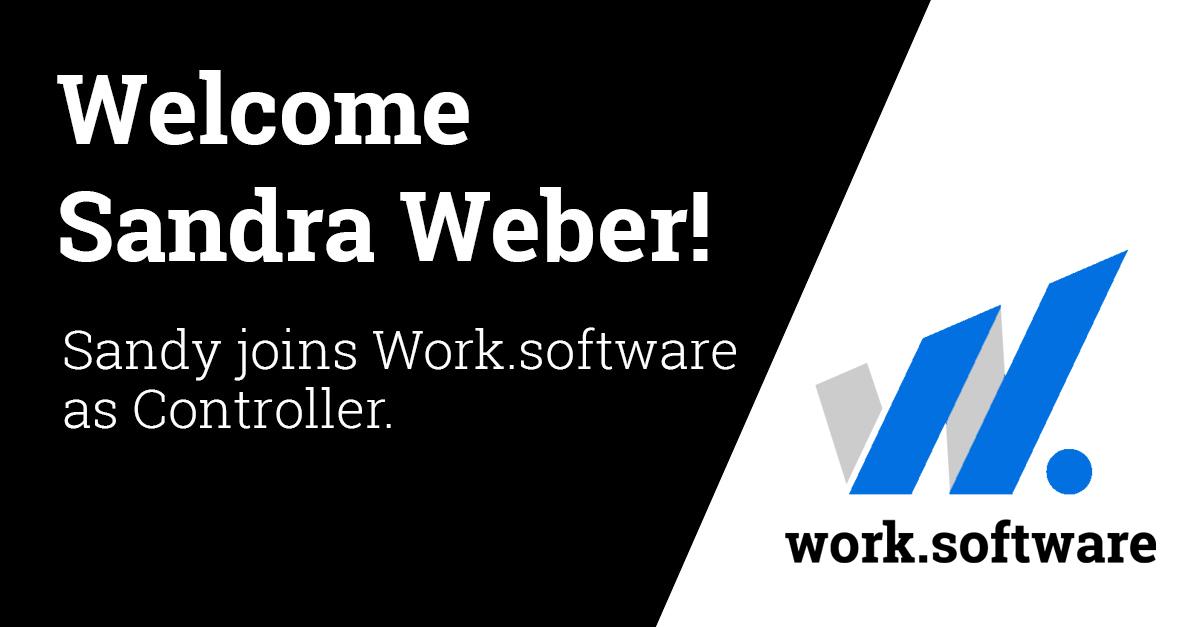 work-software-linkedIn-sandra-weber_blue
